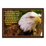 Bald Eagle with Isaiah 40:30-31 Greeting Cards