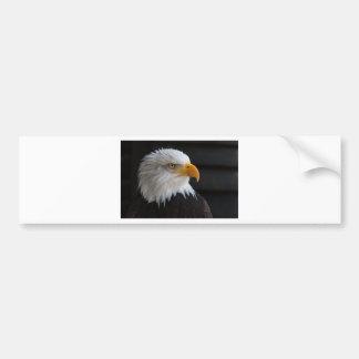 bald eagles flight freedom wings USA American Bumper Sticker