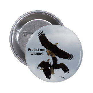 Bald Eagles Flight Photography Series Buttons