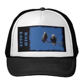 Bald Eagles Mesh Hat