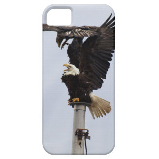 Bald Eagles Wildlife Phone Cases iPhone 5 Cover