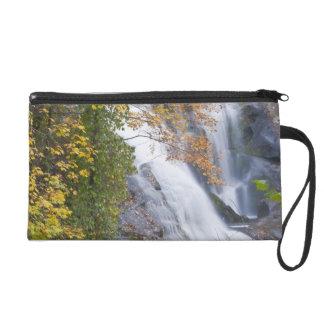 Bald River Falls Wristlet