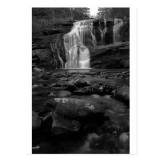 Bald River Falls bw.jpg Postcard