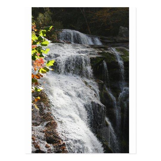 Bald River Falls-Tellico Plains, TN Postcard