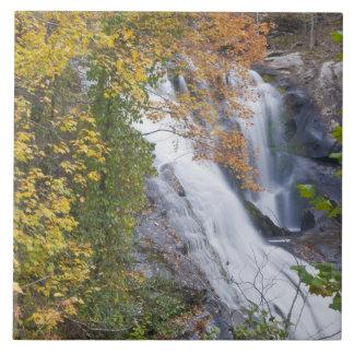 Bald River Falls Tile