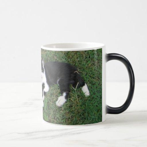 Baldwin Farm Morphing Mug