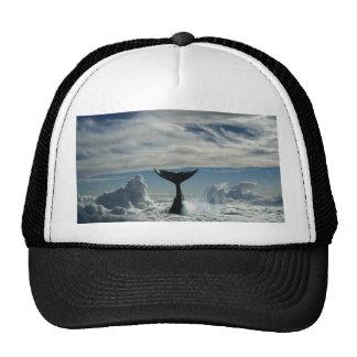 Baleia nas nuvens cap