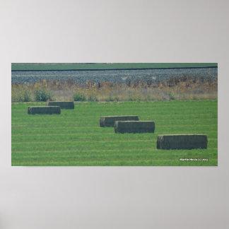 Bales of Hay II - Photo Print