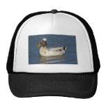 Bali Duck Trucker Hat