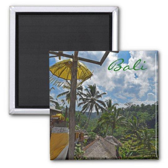 Bali Rice Fields Magnet