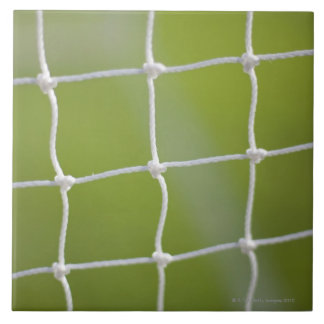 Ball in Net Tile