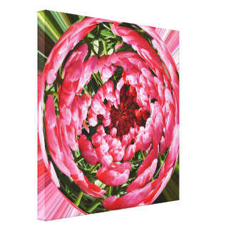 Ball of tulips canvas print