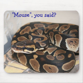 Ball Python interested in mouse. Mouse Pad