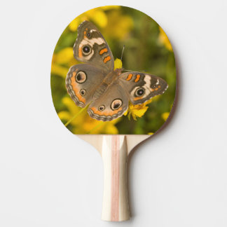 Ballard Nature Center Ping Pong Paddle