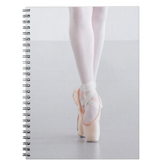 Ballet Dancer Pointe Shoes Pink Slippers Spiral Notebooks