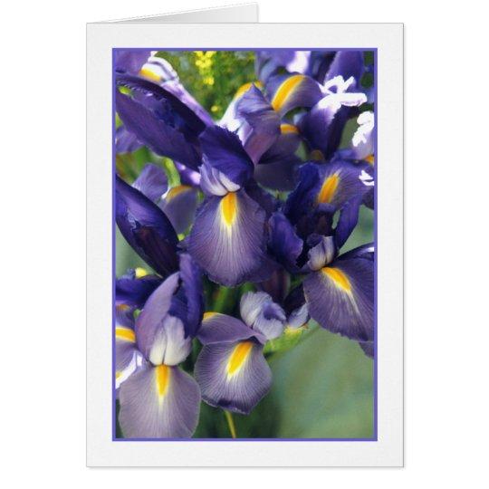 Ballet Iris Photo Greeting Card. Card