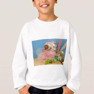 ballet lessons.jpg sweatshirt