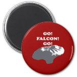 Balloon Boy - Go Falcon Go