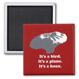 Balloon boy - It's a bird. It's a plane. It's a Ho Magnets