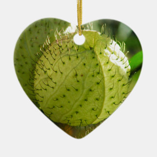 Balloon Plant Ceramic Heart Decoration