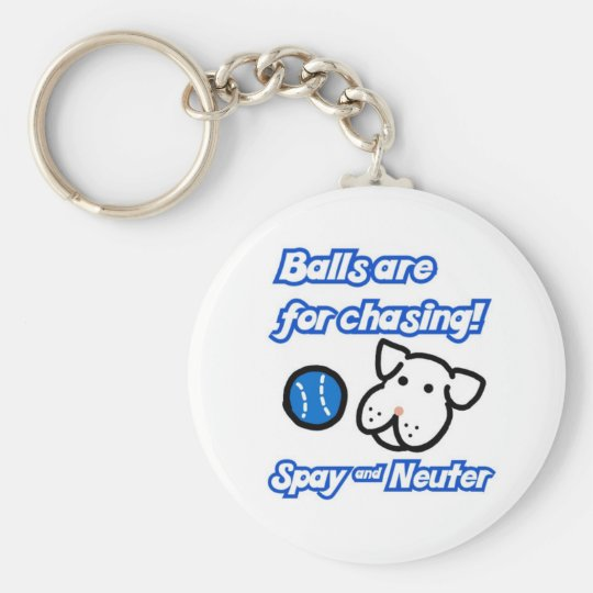 Balls are for chasing Spay and Neuter Keychain
