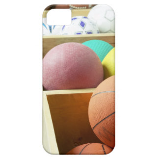 Balls stored in bins iPhone 5 cover