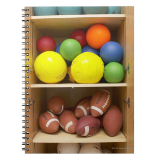 Balls stored in cabinet notebooks