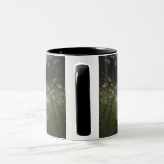 Baltic selection - Latvia Mug