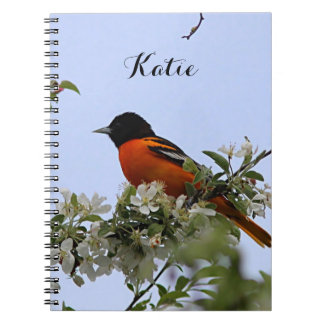 Baltimore Oriole and spring blossoms Notebook
