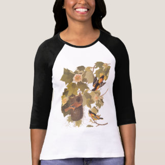 Baltimore Oriole Bird Trio T-Shirt