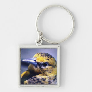 Baltimore Oriole Close-Up Key Ring