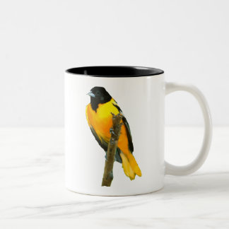 Baltimore oriole Two-Tone coffee mug