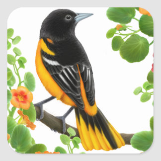 Baltimore Oriole Wild Bird Sticker