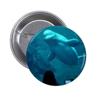 Baluga Whale 6 Cm Round Badge