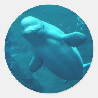 Baluga Whale Round Sticker