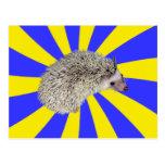 BAM! Hedgehog Postcard 2