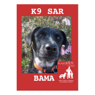 Bama Pack Of Chubby Business Cards