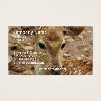 Bambi Deer Business Card