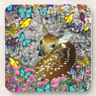 Bambina the White-Tailed Fawn in Butterflies Beverage Coaster