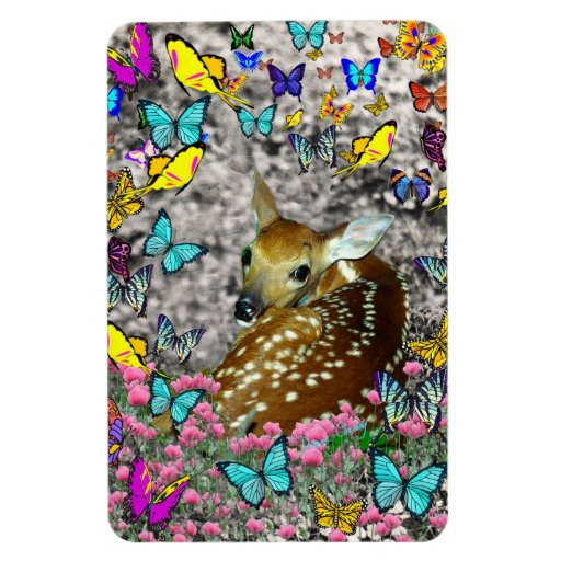Bambina the White-Tailed Fawn in Butterflies Vinyl Magnets