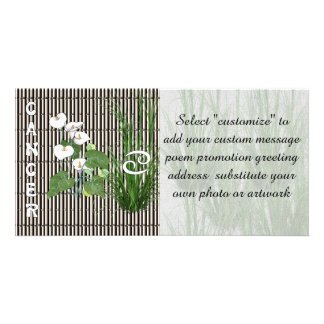 Bamboo and Lily Cancer Photo Card