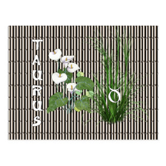 Bamboo and Lily Taurus Postcard