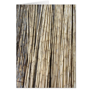 Bamboo background card