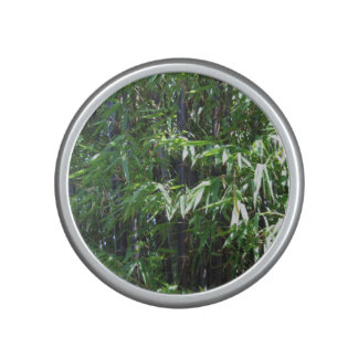 Bamboo Bumpster Speaker