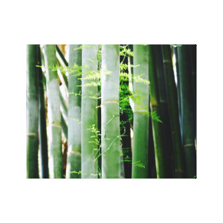 Bamboo - Canvas Art - Caribbean