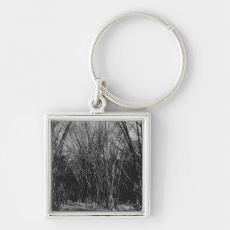 Bamboo Clump, Trinidad, c.1891 Silver-Colored Square Key Ring
