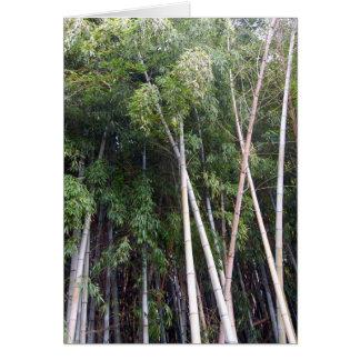 Bamboo Dance Card