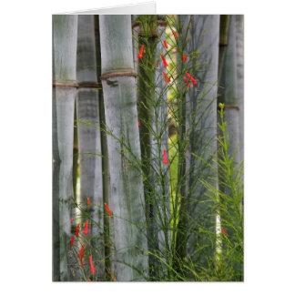 Bamboo & Flowers Card