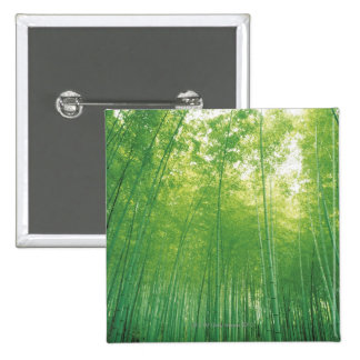 Bamboo Forest 2 15 Cm Square Badge