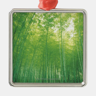 Bamboo Forest 2 Silver-Colored Square Decoration